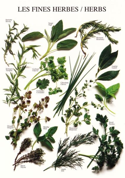 NI herbs