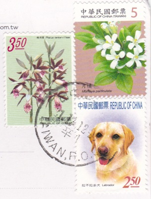 TAIWAN lab and flowers