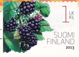 FINLAND-blackberry
